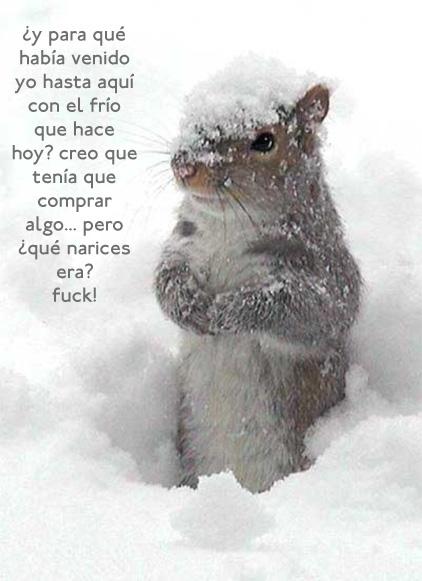 frio2